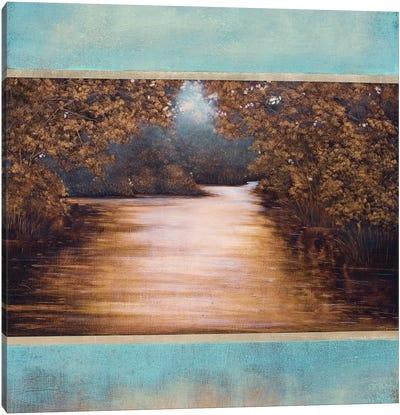 Distant Light Canvas Art Print