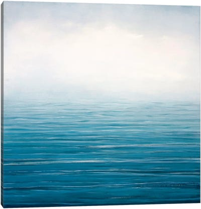 Fog Lifting Canvas Art Print