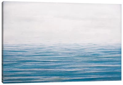 Fog On The Horizon IX Canvas Art Print