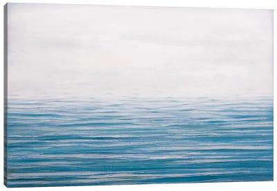Fog On The Horizon IX Canvas Art Print