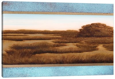 Marshland III Canvas Art Print