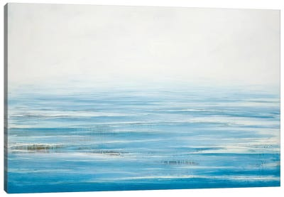 Sea Legs Canvas Art Print