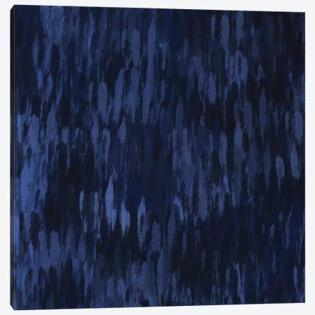 Midnight V Canvas Print #POB128} by Pomaikai Barron Canvas Art Print
