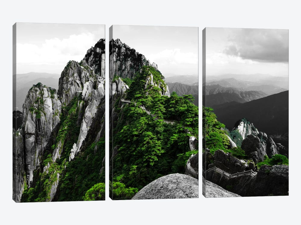 Pure Plan by 5by5collective 3-piece Canvas Wall Art