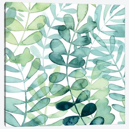 Gossamer Palms I Canvas Print #POP1020} by Grace Popp Canvas Print