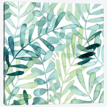 Gossamer Palms II 3-Piece Canvas #POP1021} by Grace Popp Canvas Art Print