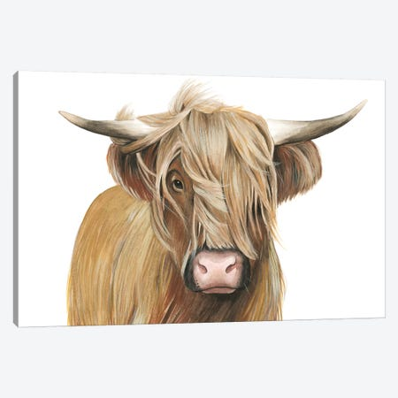 Highland Cattle I Canvas Print #POP1024} by Grace Popp Canvas Wall Art