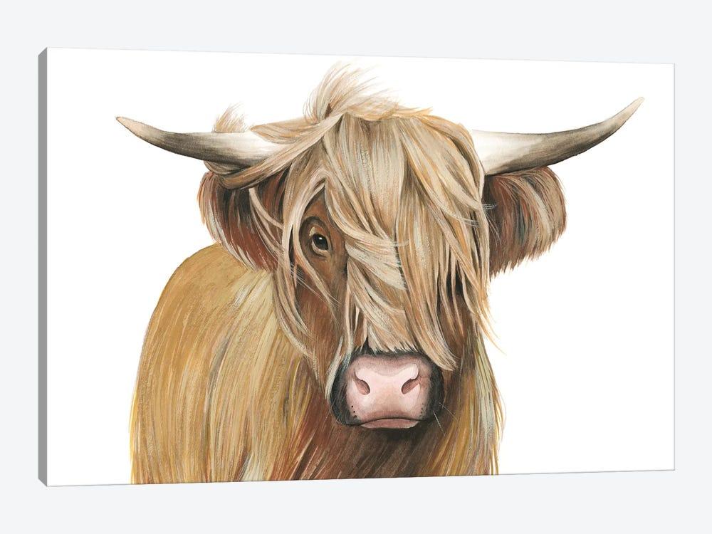 Highland Cattle I by Grace Popp 1-piece Canvas Print