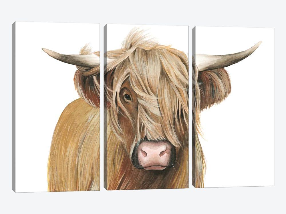 Highland Cattle I by Grace Popp 3-piece Canvas Art Print
