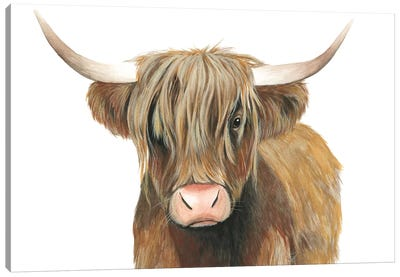 Highland Cattle II Canvas Art Print