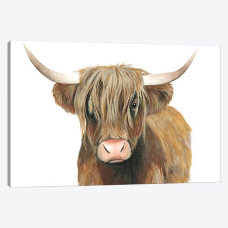 Highland Cattle II Canvas Print #POP1025} by Grace Popp Canvas Wall Art