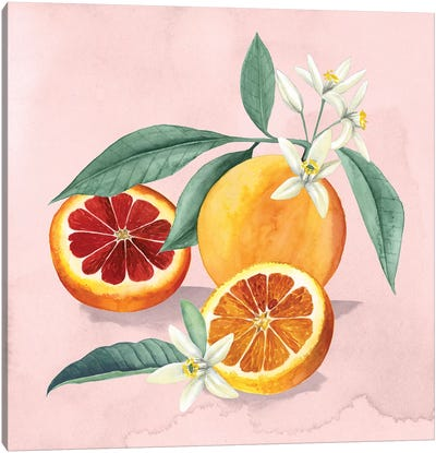 Orange Blossom II Canvas Art Print