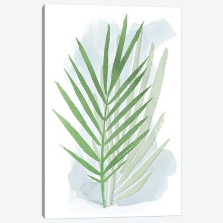 Palm Overlay I Canvas Print #POP1059} by Grace Popp Canvas Artwork