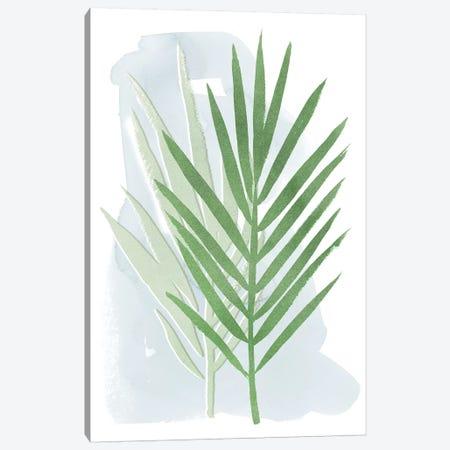 Palm Overlay II Canvas Print #POP1060} by Grace Popp Canvas Print