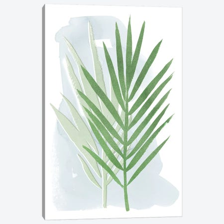 Palm Overlay II Canvas Print #POP1060} by Grace Popp Canvas Print