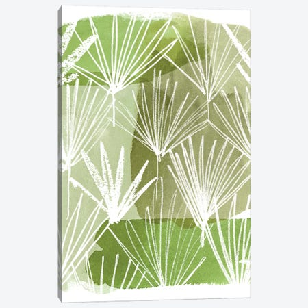 Patch Palms II Canvas Print #POP1064} by Grace Popp Canvas Art