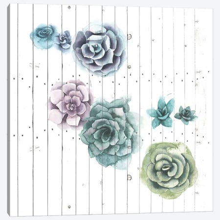 Shiplap Succulent Cluster IV Canvas Print #POP1074} by Grace Popp Canvas Print