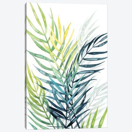 Sunset Palm Composition II Canvas Print #POP1088} by Grace Popp Canvas Print