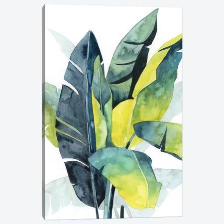 Sunset Palm Composition III Canvas Print #POP1089} by Grace Popp Canvas Art Print