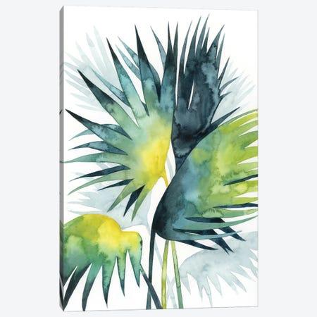Sunset Palm Composition IV Canvas Print #POP1090} by Grace Popp Canvas Artwork
