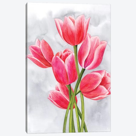 Tulip Tangle I Canvas Print #POP1091} by Grace Popp Canvas Artwork