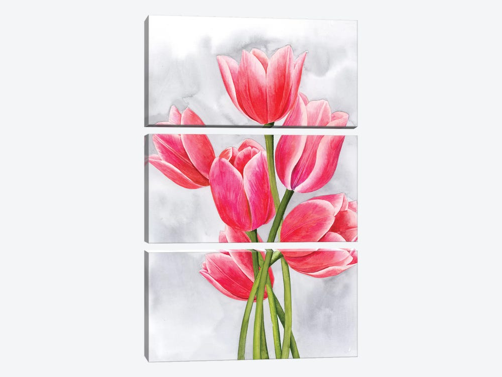 Tulip Tangle I by Grace Popp 3-piece Canvas Print
