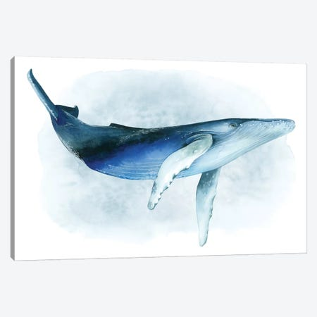 Watercolor Humpback I Canvas Print #POP1103} by Grace Popp Canvas Artwork