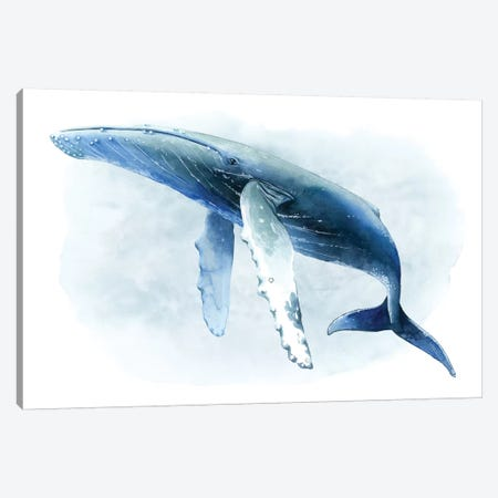 Watercolor Humpback II Canvas Print #POP1104} by Grace Popp Canvas Art Print