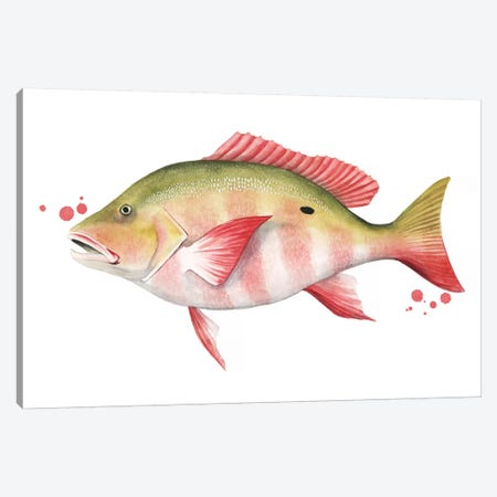 Chromatic Catch II Canvas Print #POP1130} by Grace Popp Canvas Art Print