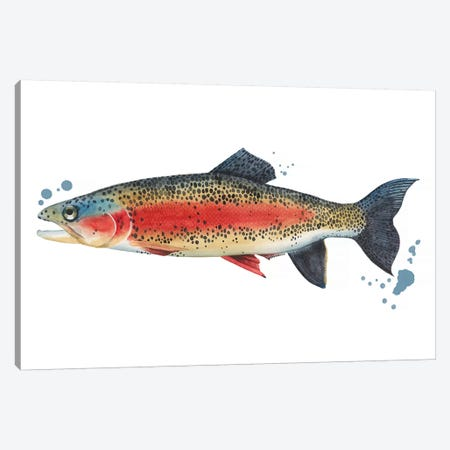 Chromatic Catch IV Canvas Print #POP1132} by Grace Popp Canvas Art Print