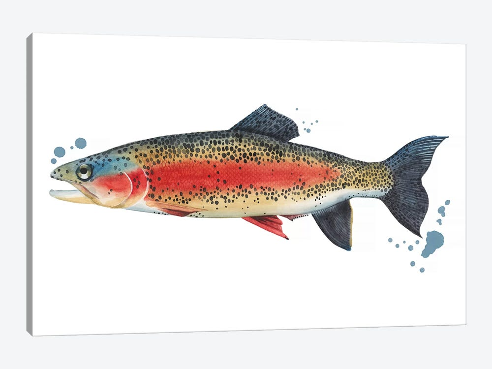 Chromatic Catch IV by Grace Popp 1-piece Canvas Print