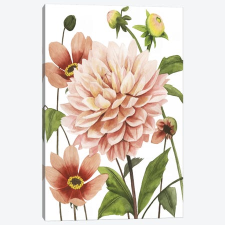 Dahlia Spell I Canvas Print #POP1141} by Grace Popp Canvas Art