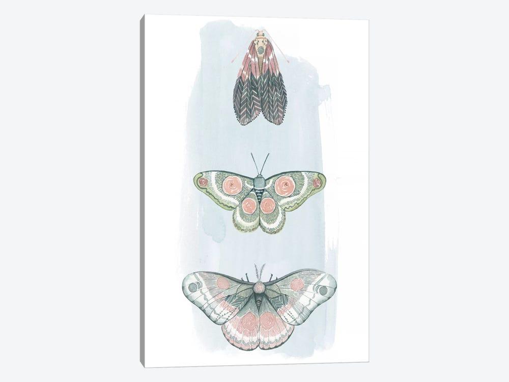 Jeweled Fairies I by Grace Popp 1-piece Canvas Artwork