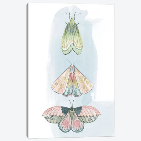Jeweled Fairies II Canvas Print #POP1165} by Grace Popp Canvas Art Print