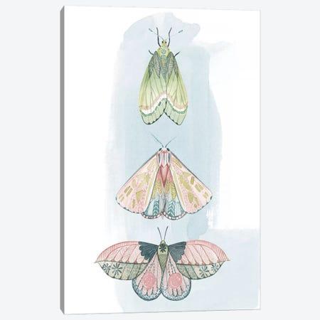 Jeweled Fairies II Canvas Print #POP1165} by Grace Popp Canvas Art Print