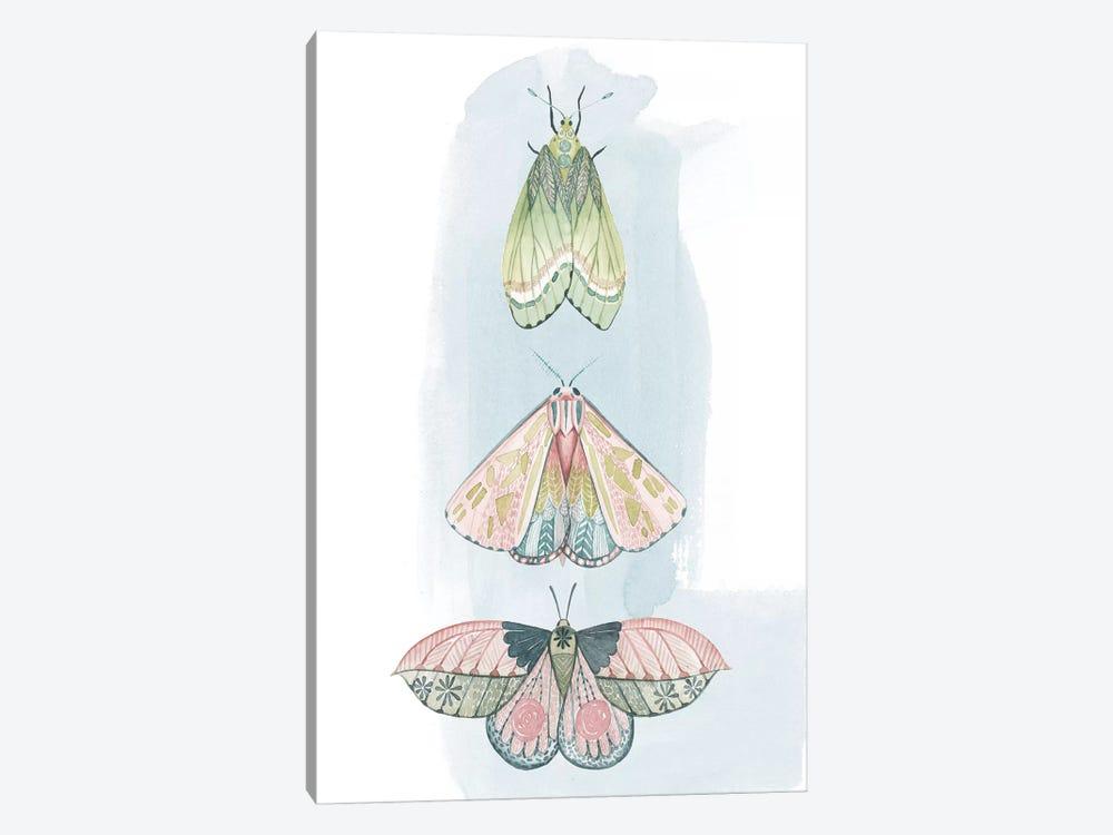 Jeweled Fairies II by Grace Popp 1-piece Canvas Print