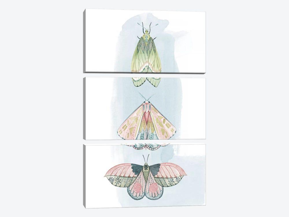 Jeweled Fairies II by Grace Popp 3-piece Canvas Art Print