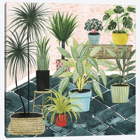 Modern Jungle II Canvas Print #POP1173} by Grace Popp Art Print