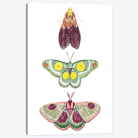 Moth Fairies I Canvas Print #POP1174} by Grace Popp Canvas Art