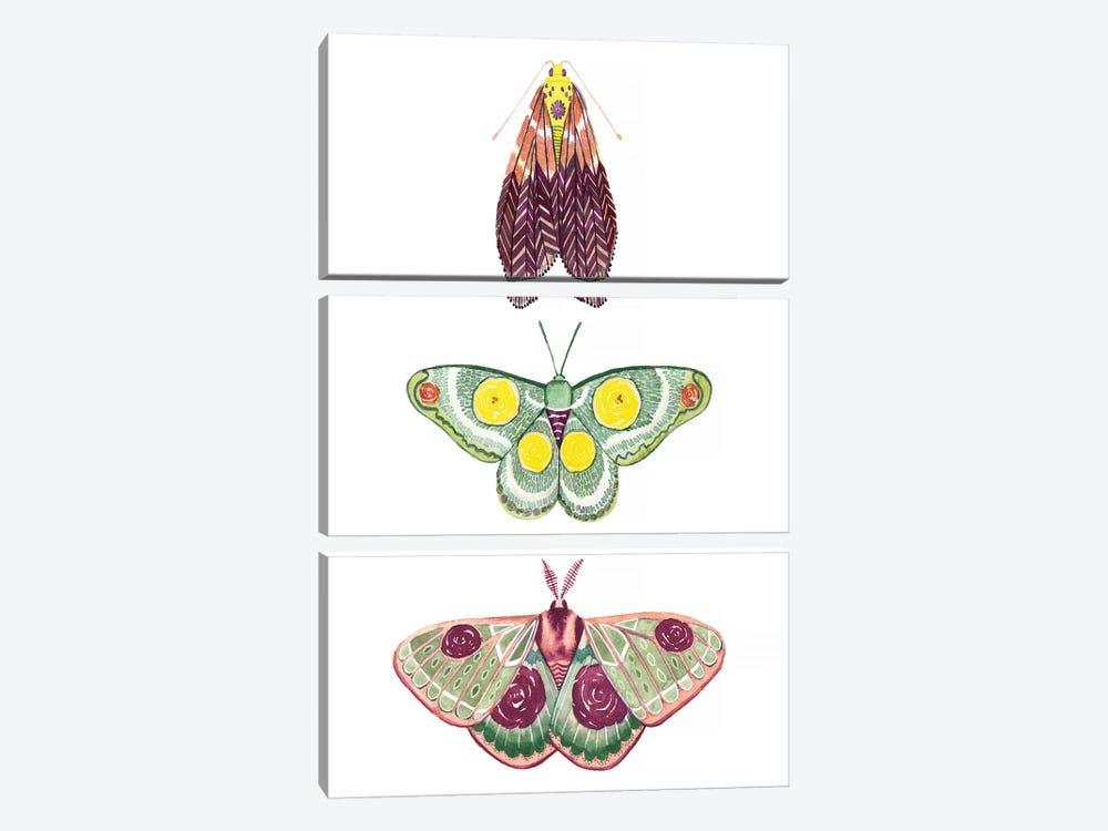 Moth Fairies I by Grace Popp 3-piece Art Print