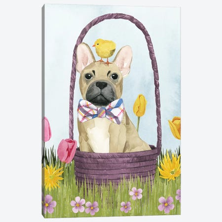 Puppy Easter III Canvas Print #POP1186} by Grace Popp Canvas Print