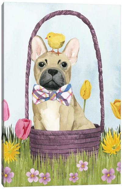 Puppy Easter III Canvas Art Print