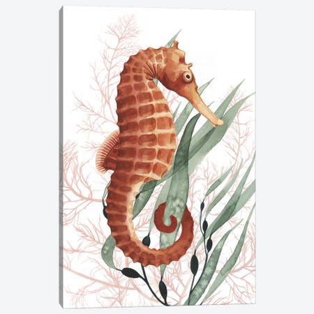 Seahorse Treasures I Canvas Print #POP1191} by Grace Popp Art Print