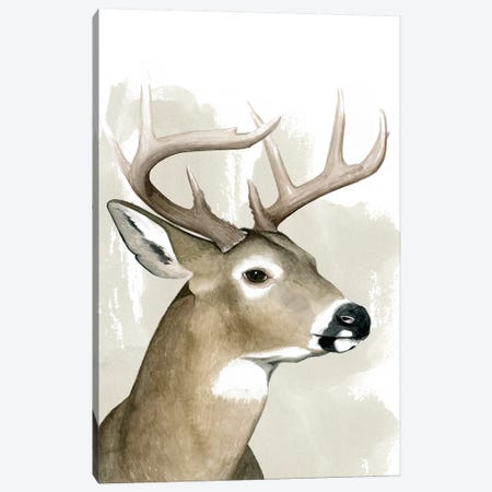 Timberland Friend I Canvas Print #POP1197} by Grace Popp Canvas Artwork