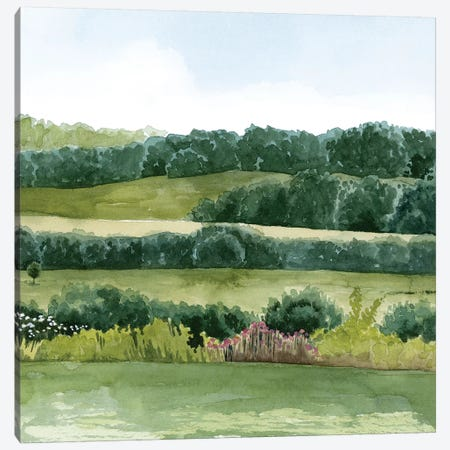 Idyllic Sunday II Canvas Print #POP1214} by Grace Popp Canvas Art Print
