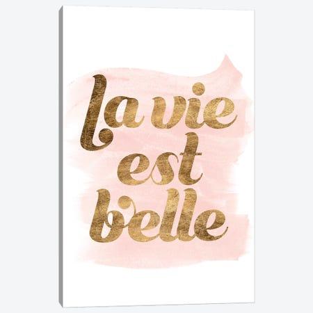 La Vie In Pink III Canvas Print #POP1217} by Grace Popp Canvas Art Print