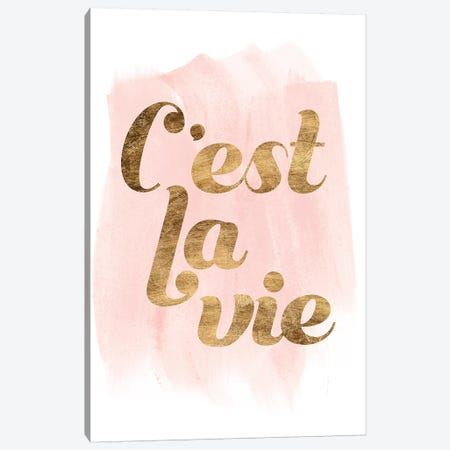 La Vie In Pink IV Canvas Print #POP1218} by Grace Popp Canvas Wall Art
