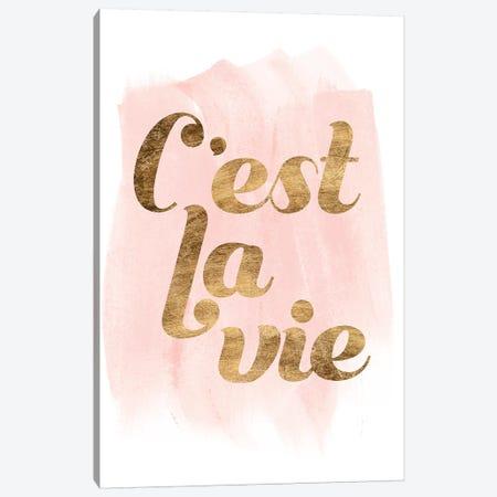 La Vie In Pink IV Canvas Print #POP1218} by Grace Popp Canvas Wall Art