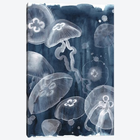 Moon Jellies I Canvas Print #POP1221} by Grace Popp Canvas Art Print