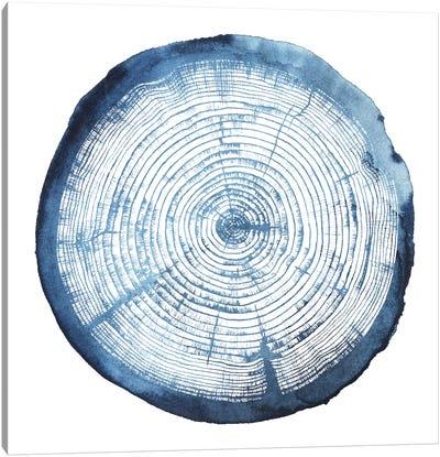 Tree Ring Overlay I Canvas Art Print